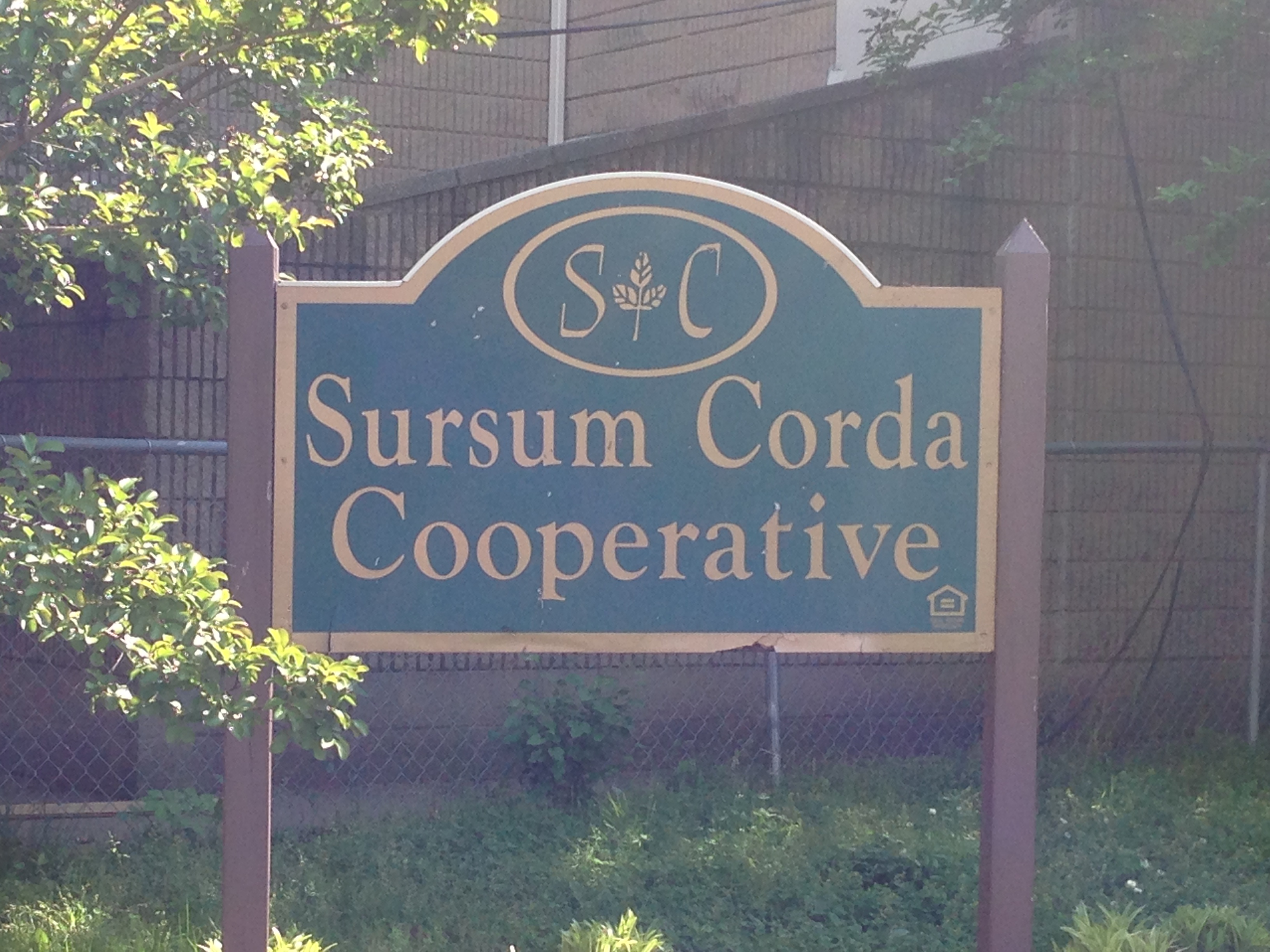 The Sursum Corda Community Day Event is Safe in the Streetz!!